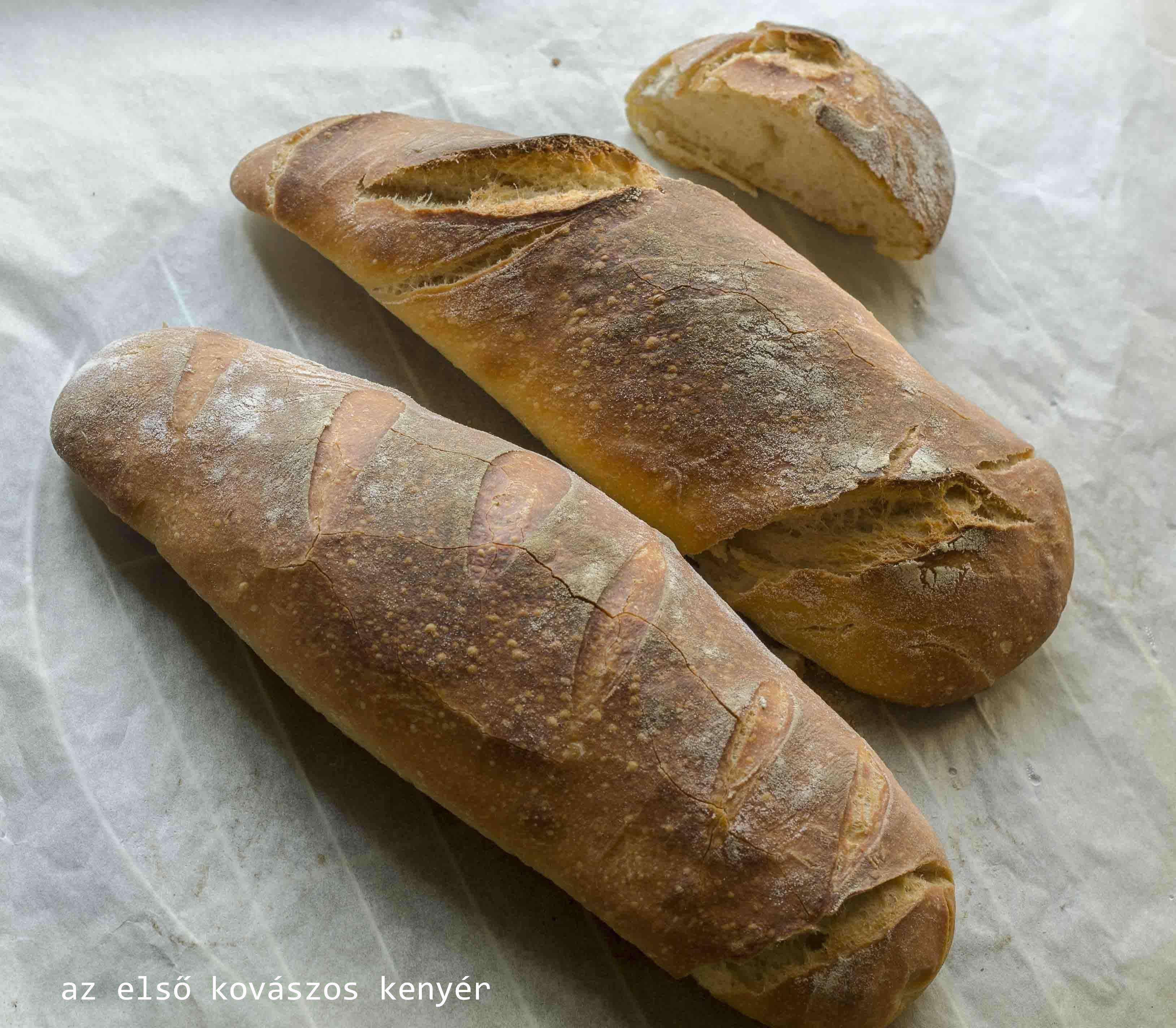 kovaszos kenyer1--