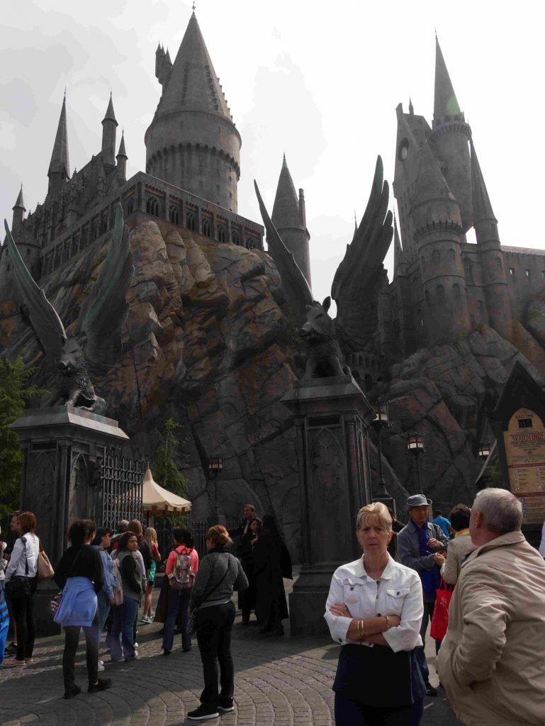 harry potter wizarding